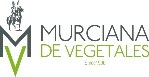 Logo Murciana Vegetales